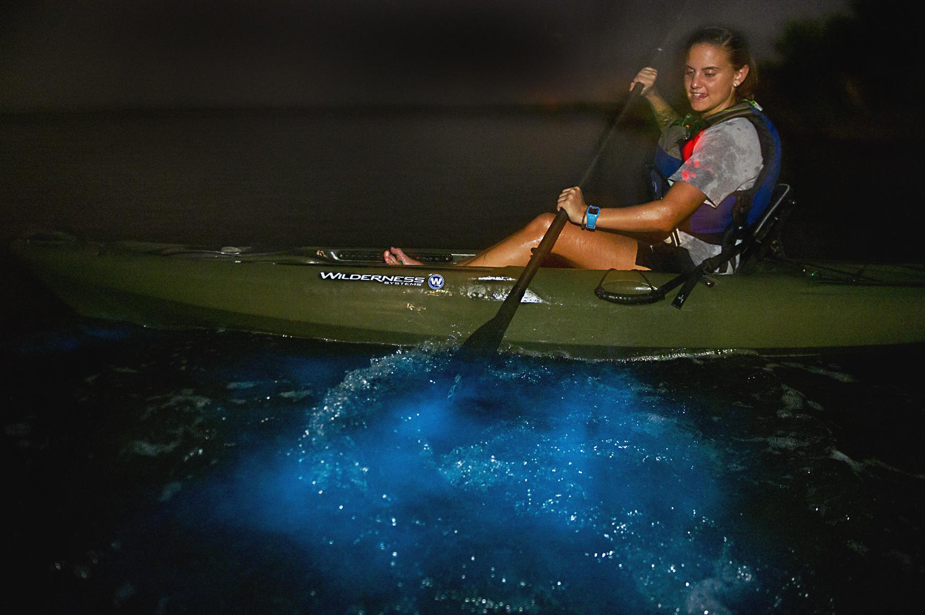 Biolum Kayaking